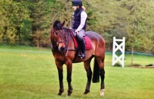 Epona Equestrian Equine Horses