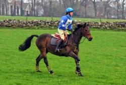 Pony Club Epona Equine
